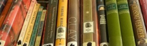 closeup view of library books
